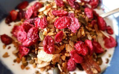 Kokosyoghurt met Granola en Cranberries